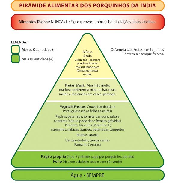 Pirâmide alimentar dos Porquinhos Piramide%20alimentar%20porquinhos%20da%20india